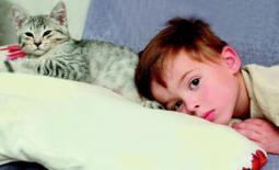 παιδί και κατοικίδιο γατάκι